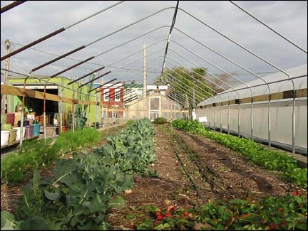 Photo: Greensgrow Farms