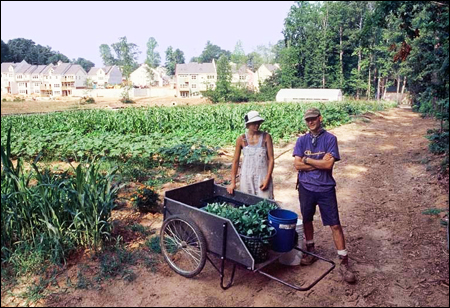 Farmers at East Lake Commons CSA